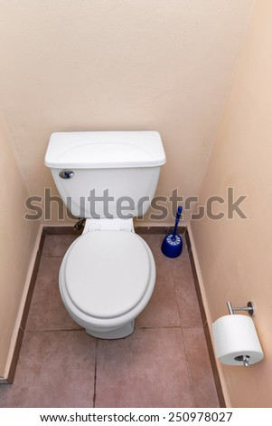 White toilet bowl and toilet paper in a bathroom interior