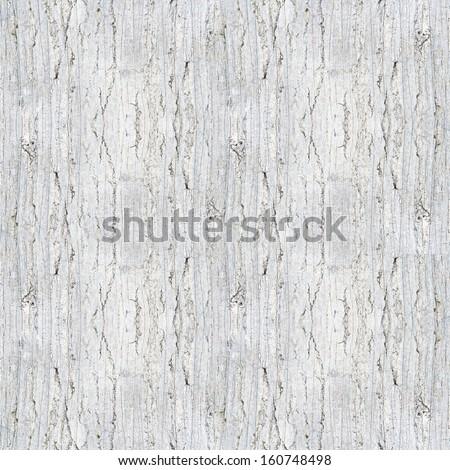 white trunk texture - stock photo