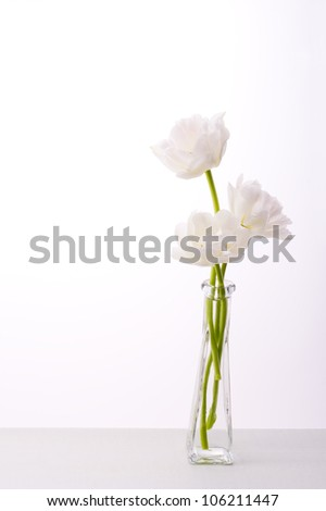 white tulips in glass bottle