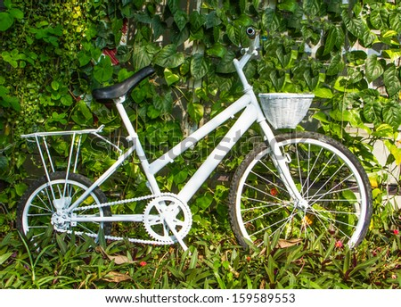 White vintage bicycle on green plants background.