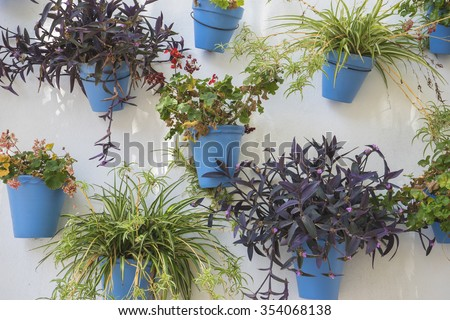 white wall with blue flower pots in Marbella, Andalucia Spain - stock photo