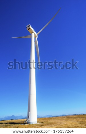 White wind turbine with a blue sky in a yellow field - stock photo