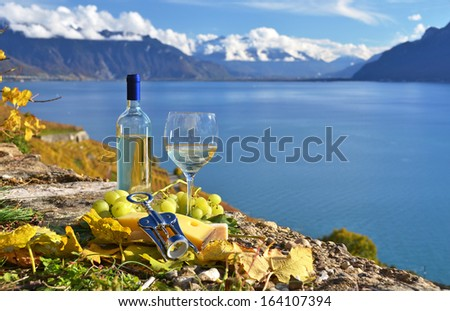 White wine and basket of grapes. Lavaux region, Switzerland