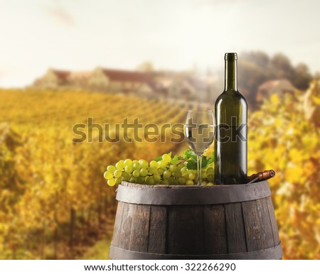White wine bottle and glass on wooden keg. Vineyard on background