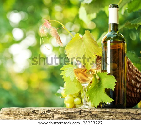 White wine bottle, glass, young vine and bunch of grapes against green spring background - stock photo