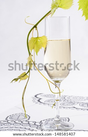 White wine glass with a grape leafs on a solid bright background