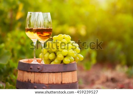 White wine  glass, young vine and bunch of grapes against green spring background