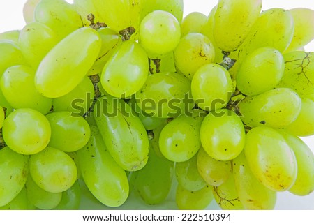 White wine grapes  - stock photo