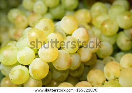 White wine grapes in the market  - stock photo