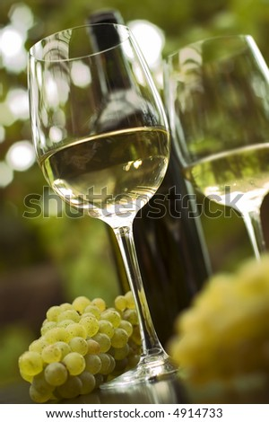 White wine in glass outside close up shoot - stock photo