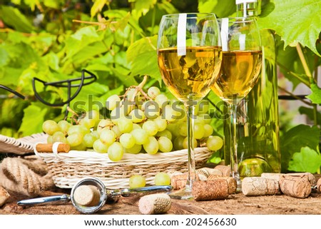 White wine on the background of green grape leaves