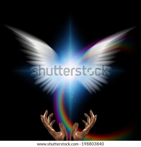 White wings - stock photo