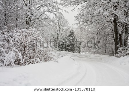 white winter landscape in Canada with trees covered in snow and a winding road - stock photo