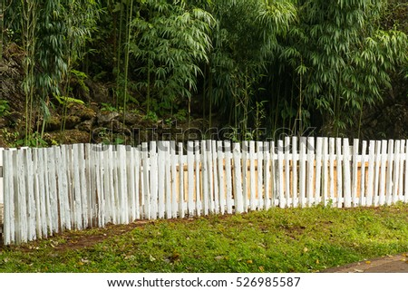 White wood border in garden of Bamboo.