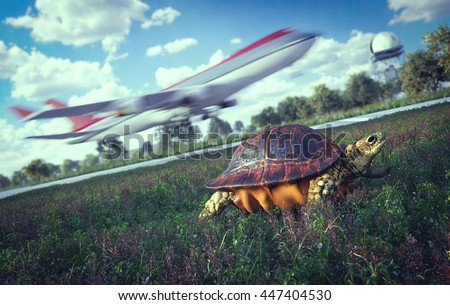 Who's faster. Airplane and running turtle. Travel technology concept