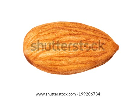 Whole almond on a white background isolated - stock photo