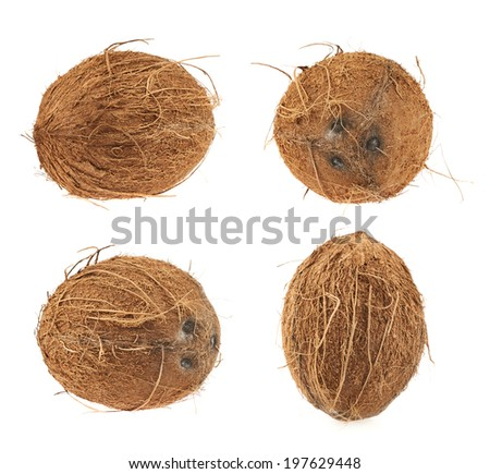 Whole coconut fruit isolated over the white background, set of four images - stock photo