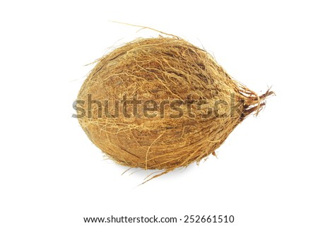 whole coconut in white background - stock photo