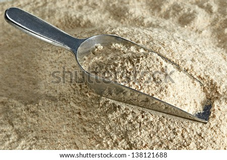 Whole flour in scoop - stock photo