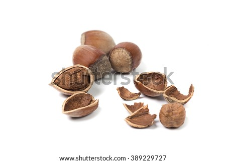 whole hazelnut, chopped hazelnut without shell