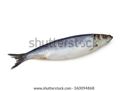 whole herring on a white background isolated