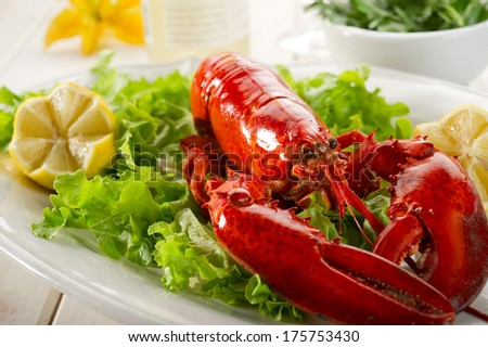 whole lobster with salad  - stock photo