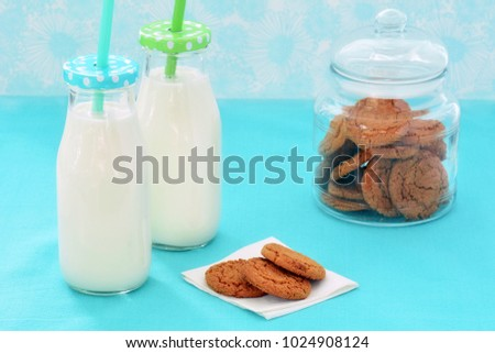 Whole milk in glass bottles and ginger cookies on turquoise background in horizontal format and shot in natural light