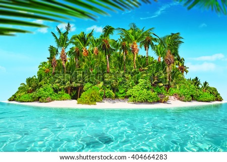 Whole uninhabited and wild subtropical isle with palm trees  within atoll in Ocean in a summer day.
