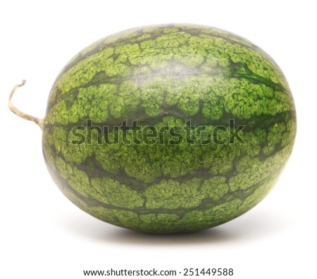 whole watermelon isolated on white background - stock photo
