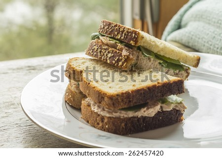 Whole wheat tuna salad sandwich with a glass of milk - stock photo
