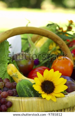 Wicker basket filled with fruits, vegetables and flower fresh from the garden - stock photo