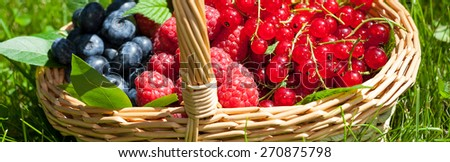 Wicker basket full of bluberries, raspberries and redcurrants - stock photo