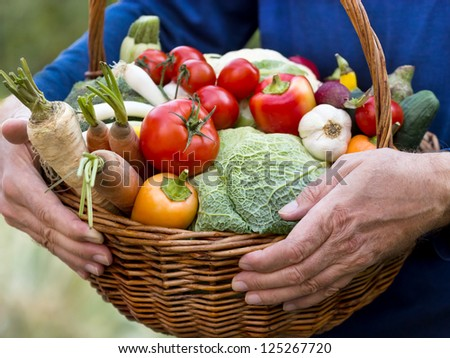 Wicker basket is full of organic vegetables - stock photo