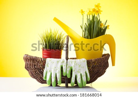 wicker basket with garden gloves and spring flowers - stock photo