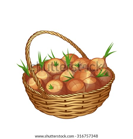 Wicker basket with onion isolated on a white background