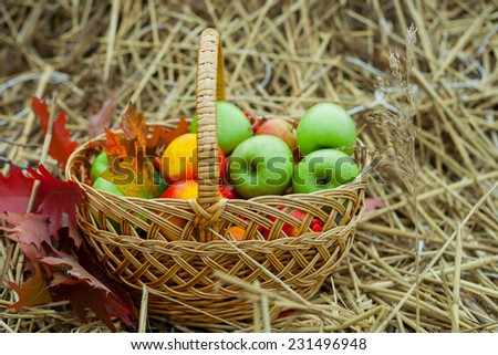wicker basket with ripe apples on the hay - stock photo