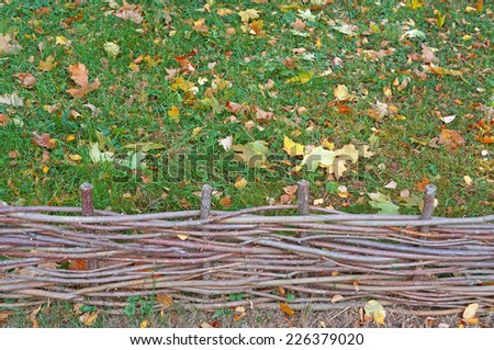 Wicker fence against the backdrop of lawn with autumn leaves                                  - stock photo