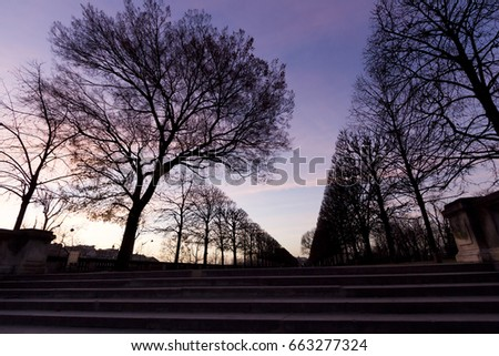 wide angle view busy design office. wide angle view of jardin des tuileries gardens in the evening paris busy design office