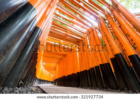 Wide angle view of Torii gates in Fushimi Inari Shrine, Kyoto, Japan