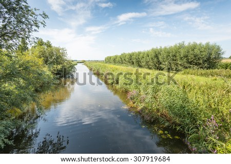 Wide ditch in a rural area in a Dutch polder in the summer season. - stock photo