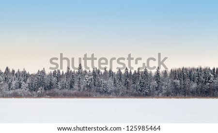 Wide empty panoramic background landscape with coastal forest on frozen lake in winter season, Karelia, Russia - stock photo