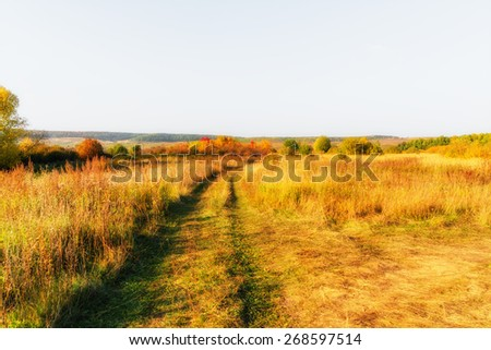 Wide meadow and rut beneath clear sky - stock photo