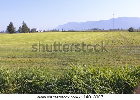 Wide open rural farm land found in Canada s Fraser Valley District/Wide Open Rural Land/Wide open rural farm land found in Canada s Fraser Valley District