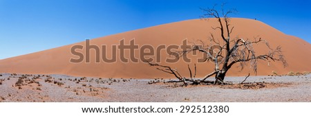 wide panorama of Dune 45 in sossusvlei Namibia, best place in namibia - stock photo