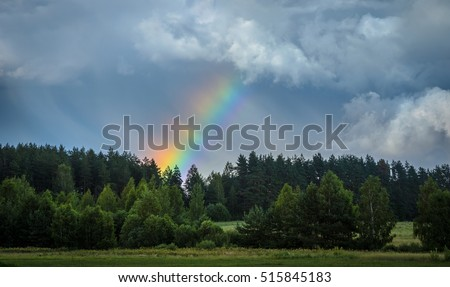 wide rainbow over the forest after the rain