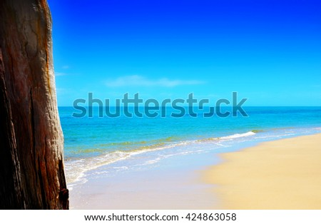 Wide sandy beach with blue skies and calm ocean with jetty pylon in foreground. - stock photo