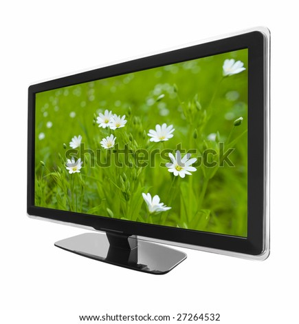 wide screen tv display with chamomiles field isolated on white - stock photo