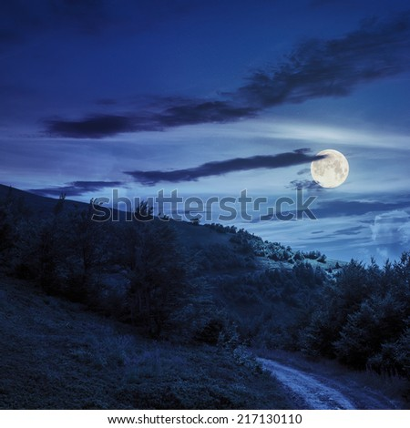 wide trail  near the lawn in the shade of pine trees of green forest at night in full moon light - stock photo