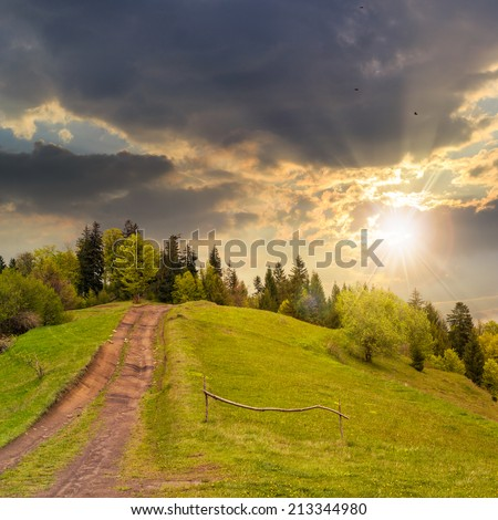wide trail with a wooden fence near the lawn in green forest with pine trees  in mountains at sunset - stock photo