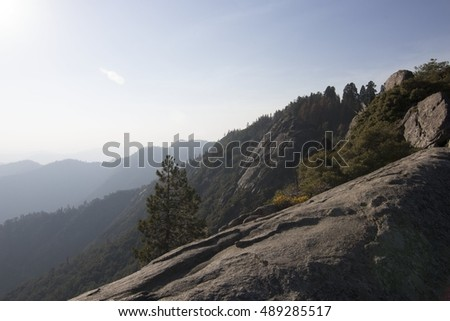 Wide View of Mountains and Trees